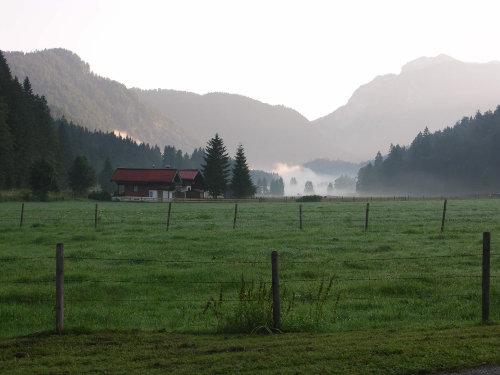 Blick aus Fenster m. Herbst- Morgennebel