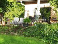 Am Mischwald in der Nossentiner-Schwinzer Heide in Nossentiner Hütte - kleines Detailbild