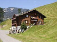 Appartements Haus Monika, Wohnung Üntschenspitze in Schoppernau - kleines Detailbild