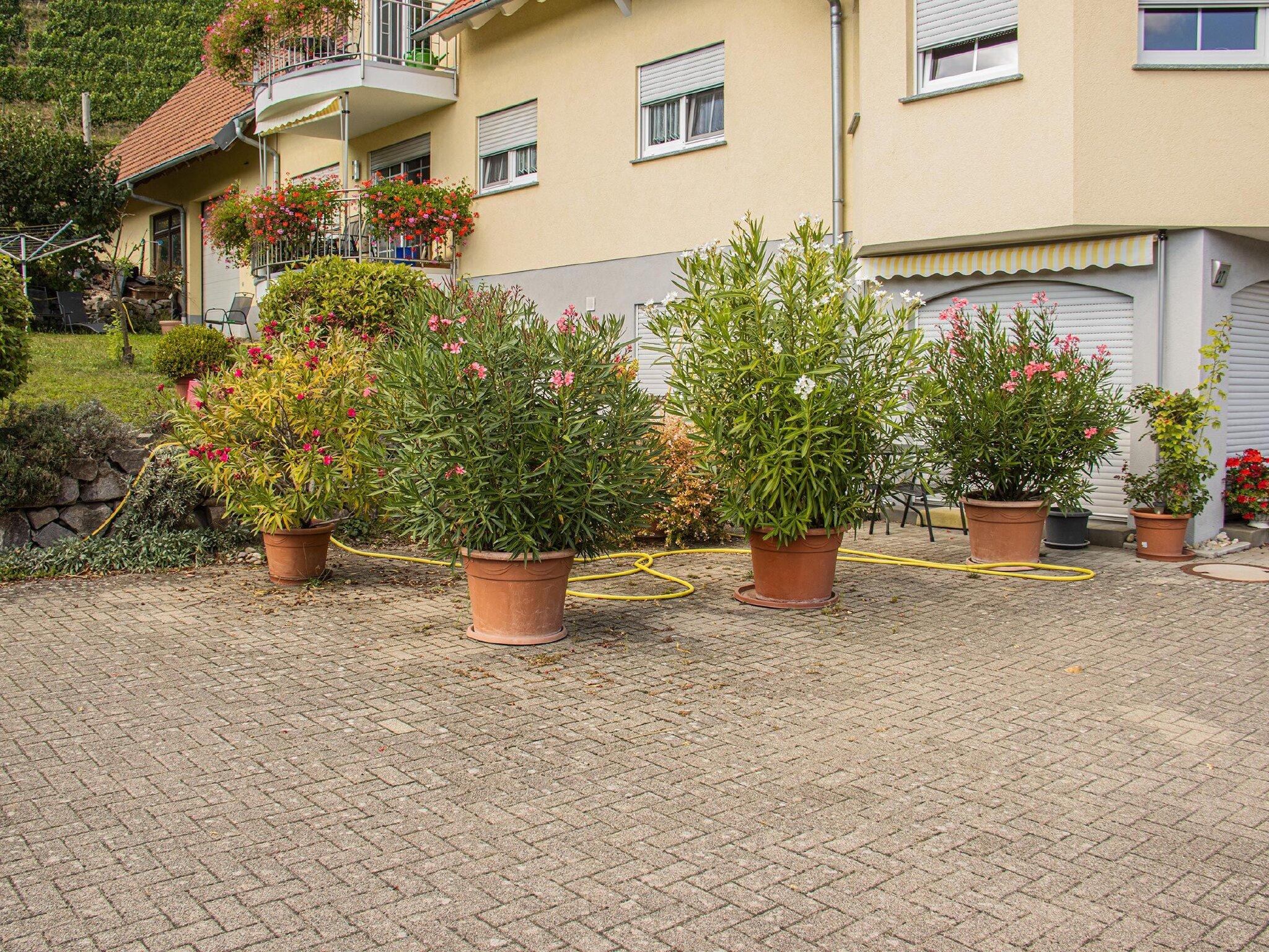 Ferienhof Mayer-Frontseite