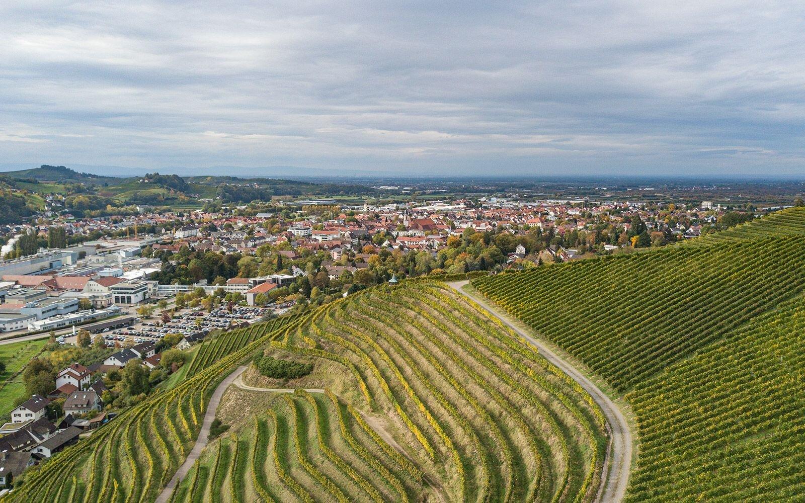 die Schauenburg, hoch über Oberkirch