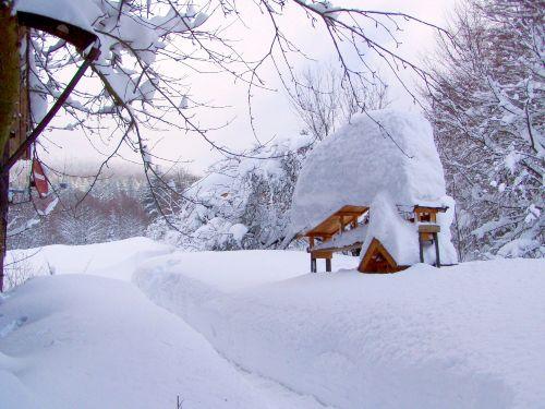 Winter-beim-Haus-1