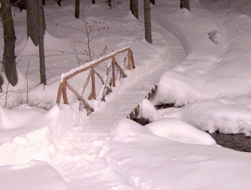 Winter-beim-Haus-2