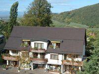 Park-Appartements Badenweiler (Alt), Komfort Appartement Typ C, 60 m² in Badenweiler - kleines Detailbild
