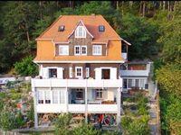 LF-Ferienwohnung Waldheim Lindenfels, Ferienwohnung Waldheim Lindenfels in Lindenfels - kleines Detailbild