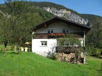 Haus Pritzi, Ferienwohnung für 2-5 Personen 1 in Mellau - kleines Detailbild