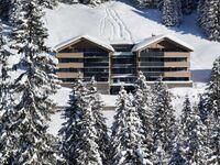 Alpinresort**** Damüls Appartements, Appartement Typ A in Damüls - kleines Detailbild