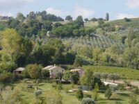 La Lucciola, Cantina in Cupramontana - kleines Detailbild