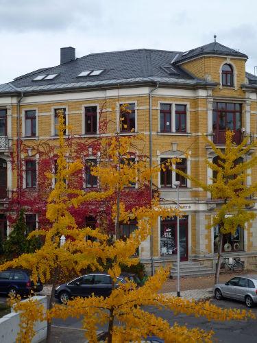 Blick vom Balkon im Herbst