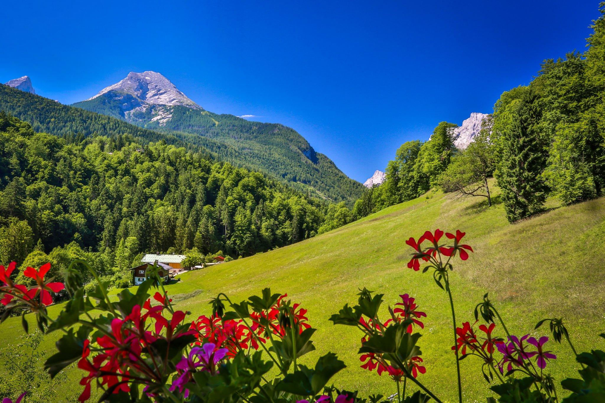 Blick auf die Berge, wundersch�n...