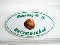 0520 Herrenhof, Herzmuschel 10 Herrenhof in Wrixum - kleines Detailbild