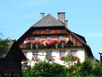 Tromörthof, Ferienwohnung Preberblick in Lessach - kleines Detailbild