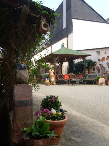 in unserem Eulenhof