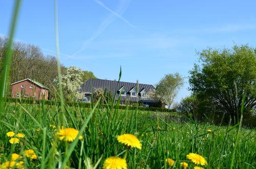 Bild im Frühling auf das Haus