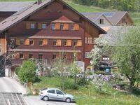 Ferienwohnung Haag, Appartement  Sonnenaufgang in Schwarzenberg im Bregenzerwald - kleines Detailbild