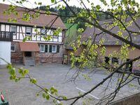 Ferienwohnungen Zur Mühle, Ferienwohnung 1 in Mossautal-Hiltersklingen - kleines Detailbild