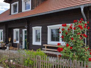 Spreewaldhaus zum Schoberplatz - Libelle in Lübben - Deutschland - kleines Detailbild