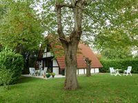 Ferienhaus Elbidylle in Hollern Twielenfleth - kleines Detailbild