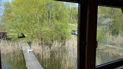 Blick vom Fenster auf das Ufer