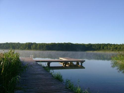 Umgebung von Landhaus Strietfeld - Ferienwohnung I