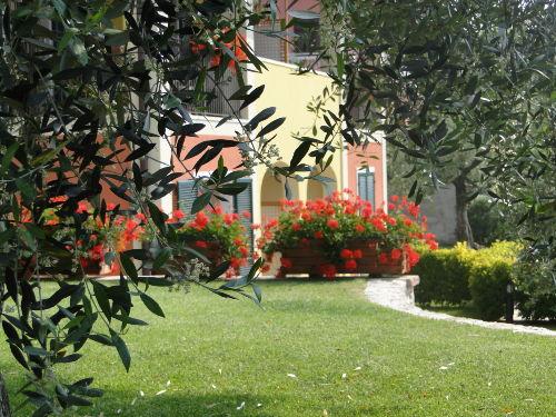 Dolce Vita unter Olivenbäumen...