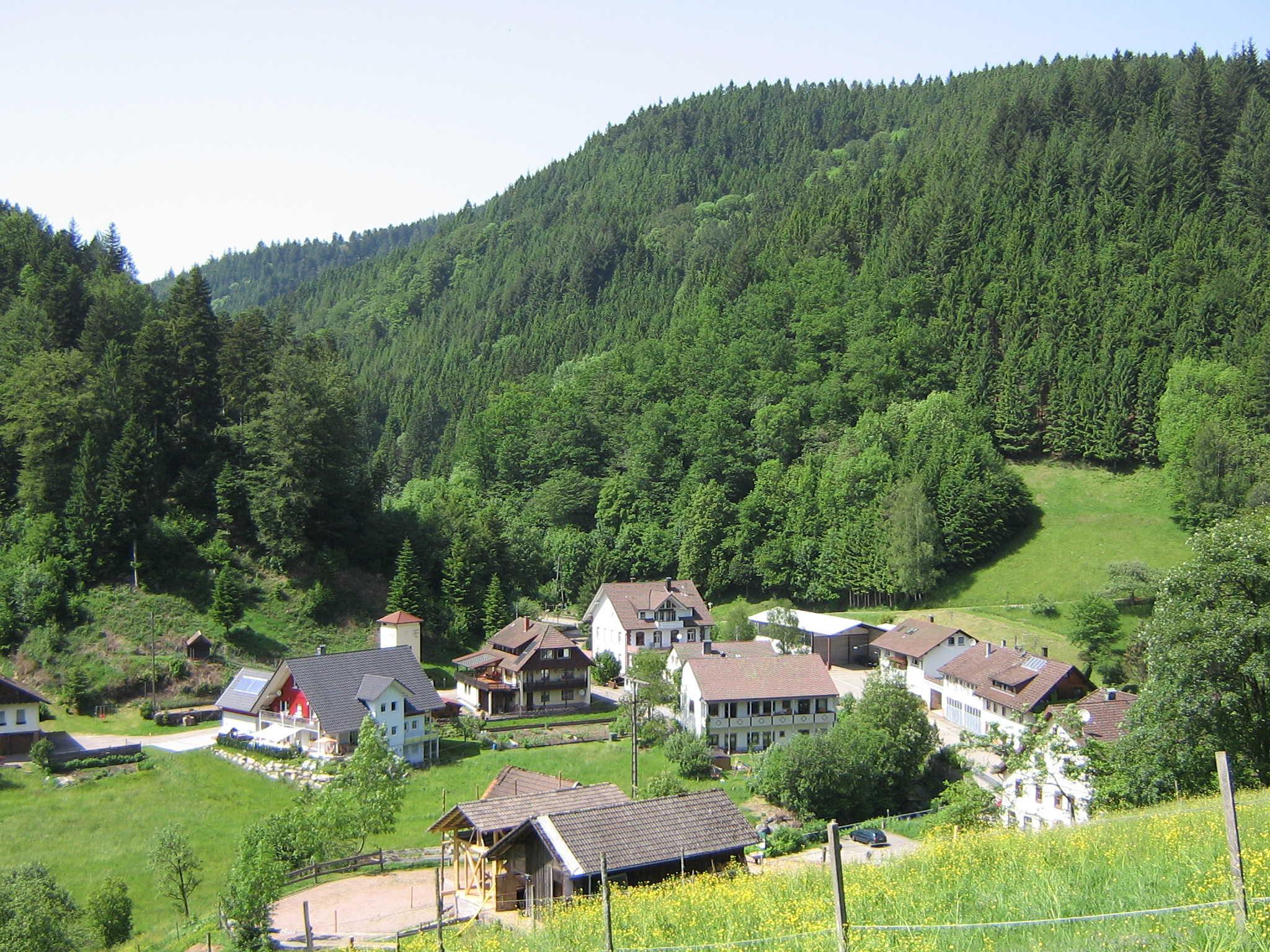 Die Umgebung der Seebachschule