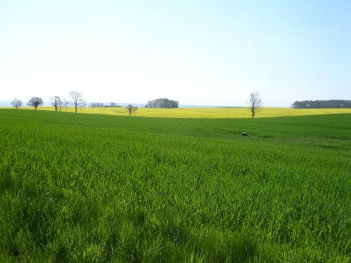 Landschaft um Grömitz