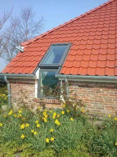 Zusatzbild Nr. 08 von Landhaus Rosenhoern