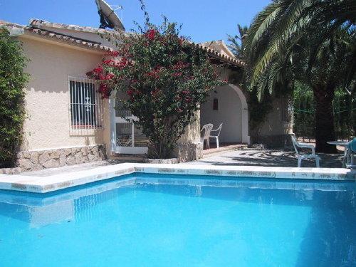 Terrasse und Pool, von Palmen beschattet