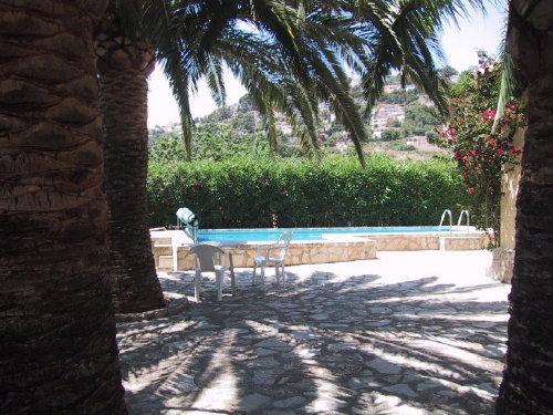 Poolterrasse unter Palmen