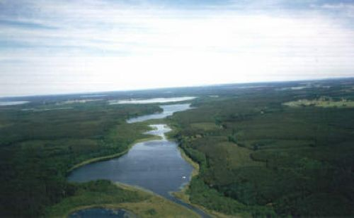 Wälder und Seen bei Rechlin