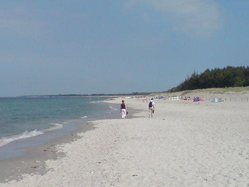Die Ostsee zwischen Zingst und Prerow