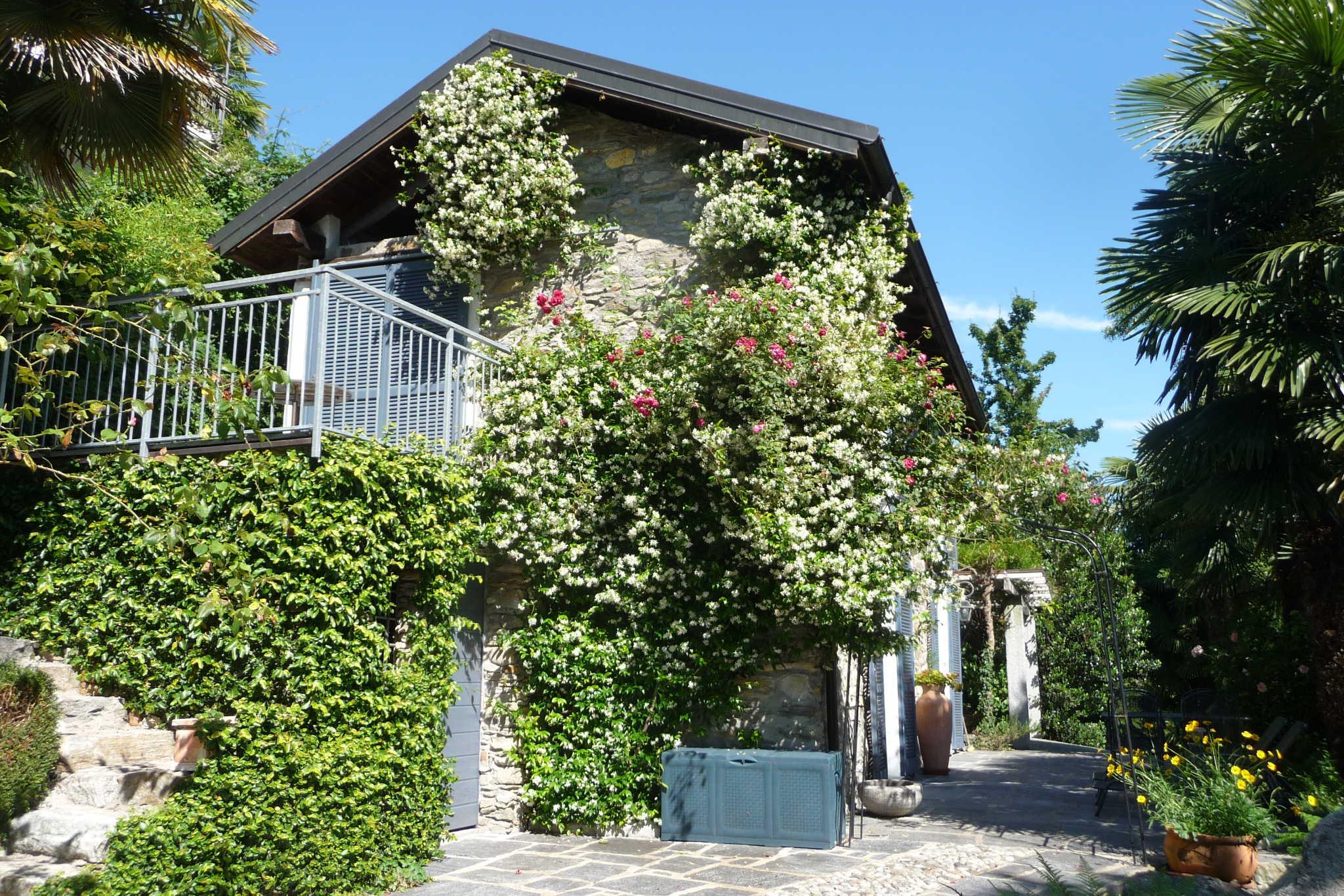 Zusatzbild Nr. 08 von Ferienhaus Rustico