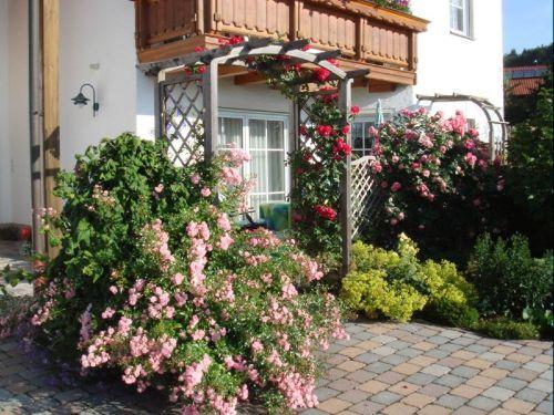 Blick auf Vorgarten und Terrasse