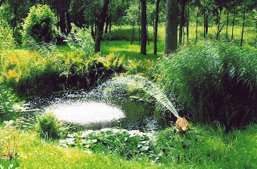Kleiner Gartenteich mit Wasserfontäne