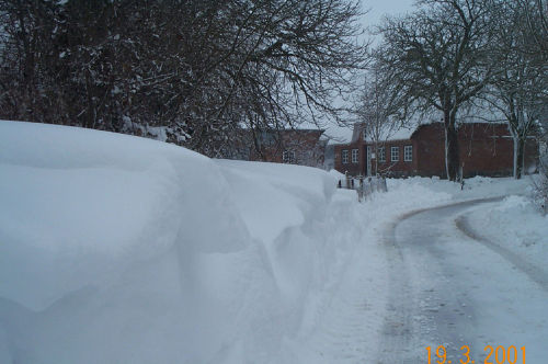 Der Winter 2001