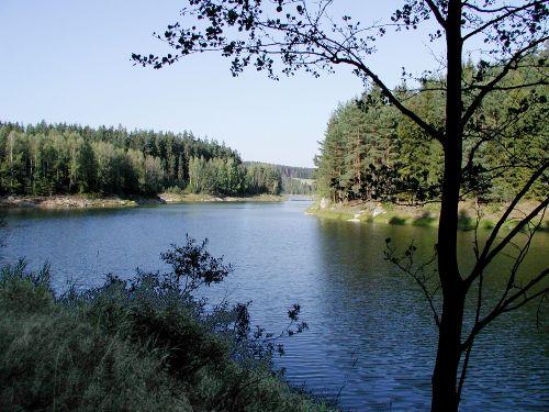 typisch für unsere Gegend- Wald + Wasser