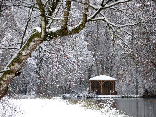 Winterstimmung am Betzm�hlweiher