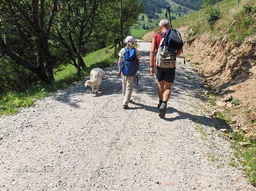 Wander- und Bik-Wege rings um Wieden