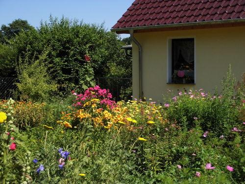 Bauerngarten im Sommer