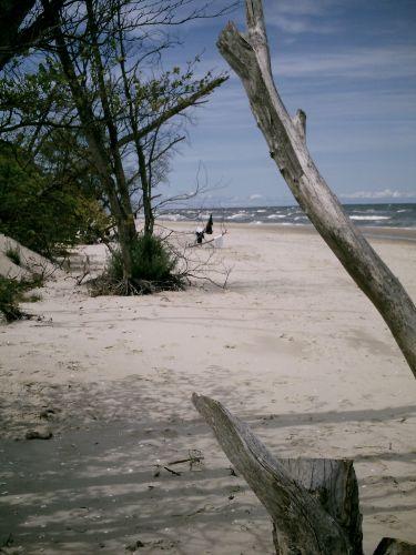 Strand mit Strandgut