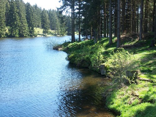 B�renbrucher Teich