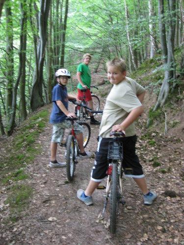 Fahrradtour durch den Wald