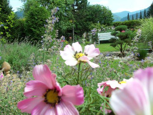 Wohng. B, Blick in den Garten