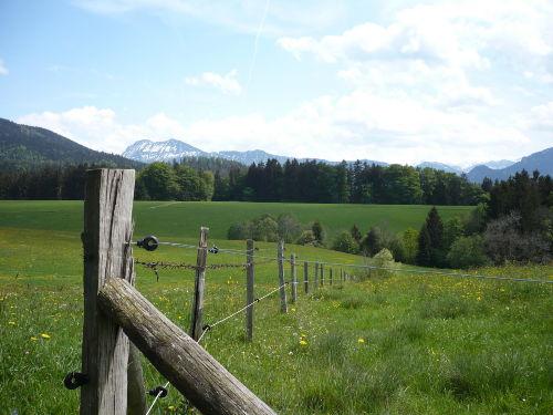 am Wanderweg nach Inzell