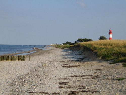 Strand bei Falsh�ft