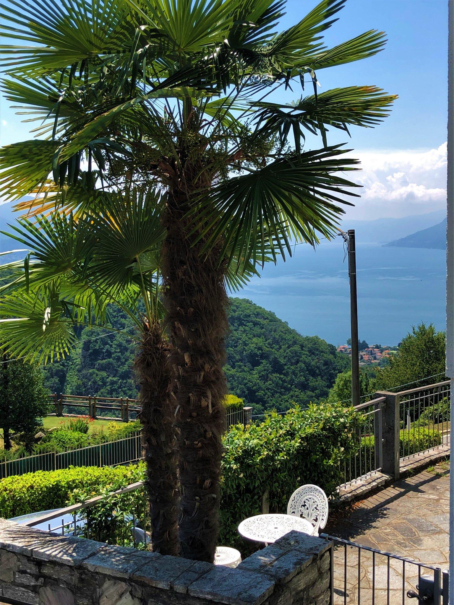 Frühlingsblick auf den Lago Maggiore