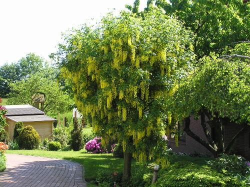 2 km Fuß- und Radweg bis nach Laboe