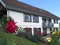 Ferienwohnung Gempp in Kleines Wiesental-Sallneck - kleines Detailbild