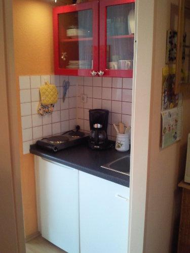komfortabel eingerichtete Kochnische
